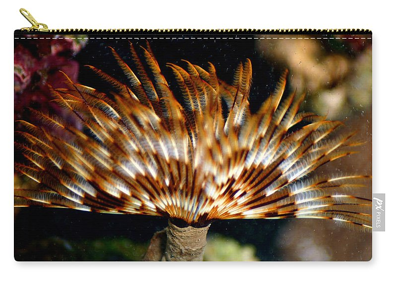 Feather Duster Carry-all Pouch featuring the photograph Feather Duster by Anthony Jones