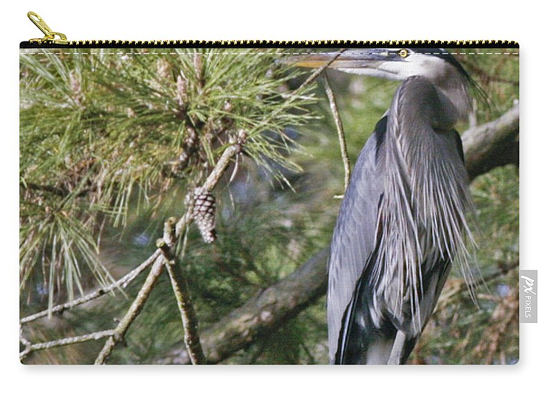 Bird Carry-all Pouch featuring the photograph Feathers by Phill Doherty