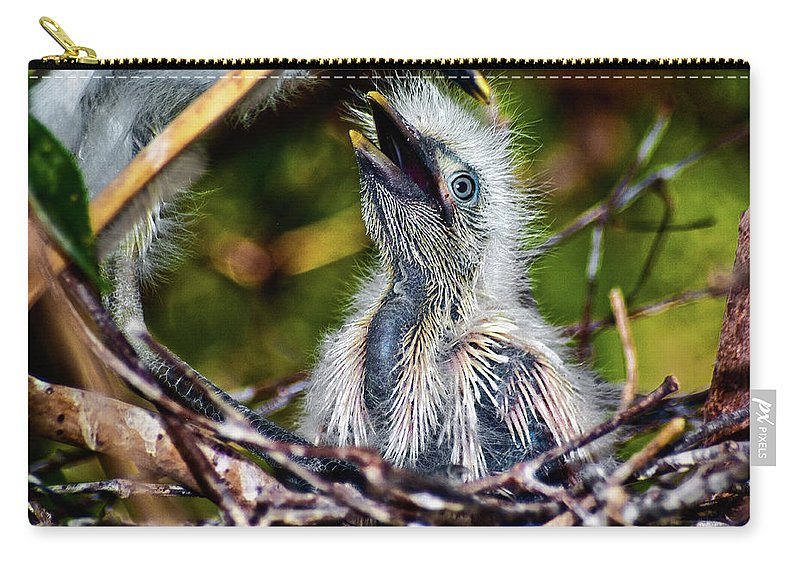 Egret Carry-all Pouch featuring the photograph Feed Me by Christopher Holmes