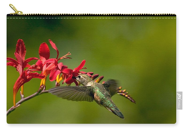 Floral Carry-all Pouch featuring the photograph Feeding Hummer by Randall Ingalls
