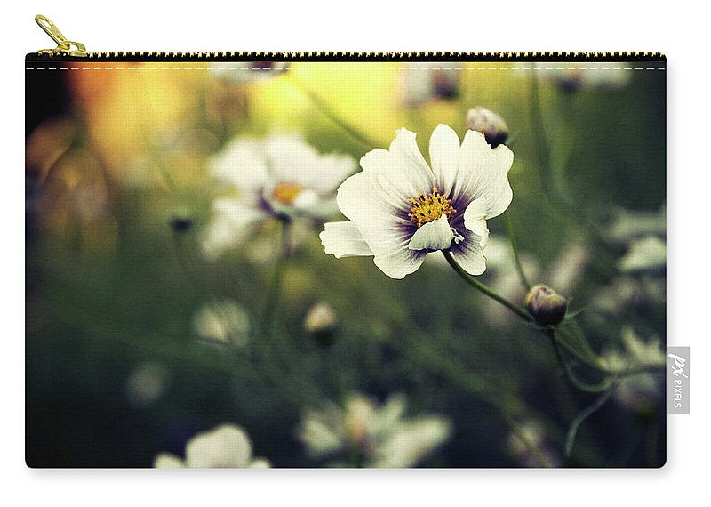 Landscape Carry-all Pouch featuring the photograph Feelin The Rays by RicharD Murphy