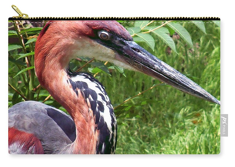 Bird Carry-all Pouch featuring the photograph Feeling A Bit Peckish by RC deWinter