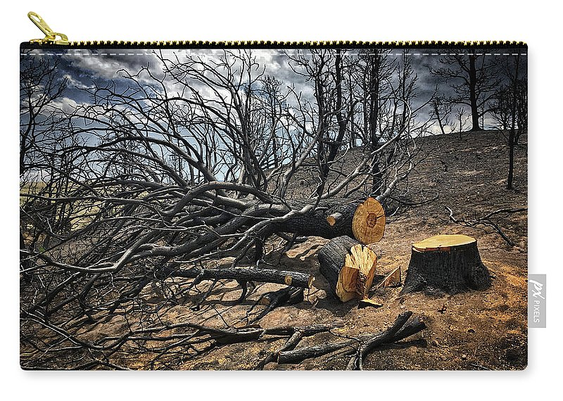 Trees Carry-all Pouch featuring the photograph Felled After The Wildfire by Douglas Craig