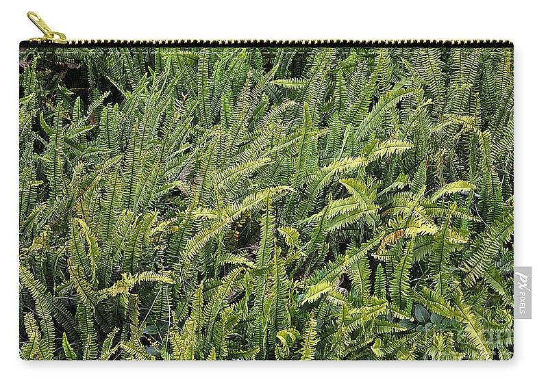 Clay Carry-all Pouch featuring the photograph Fern by Clayton Bruster
