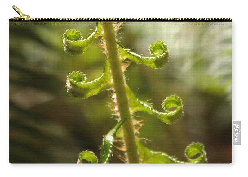 Fern Frond Carry-all Pouch featuring the photograph Fern Frond by Carol Groenen