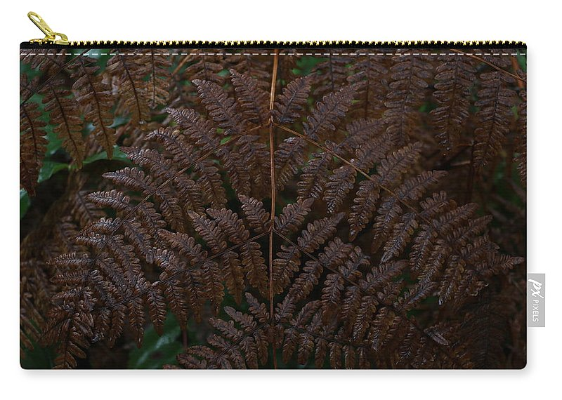 Fern Carry-all Pouch featuring the photograph Fern Kaleidescope by Dani Keating