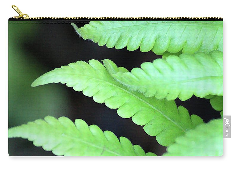 Ferns Carry-all Pouch featuring the photograph Fern Tips - Digital Painting by Carol Groenen