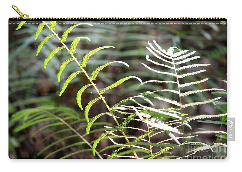 Ferns Carry-all Pouch featuring the photograph Ferns In Natural Light by Carol Groenen