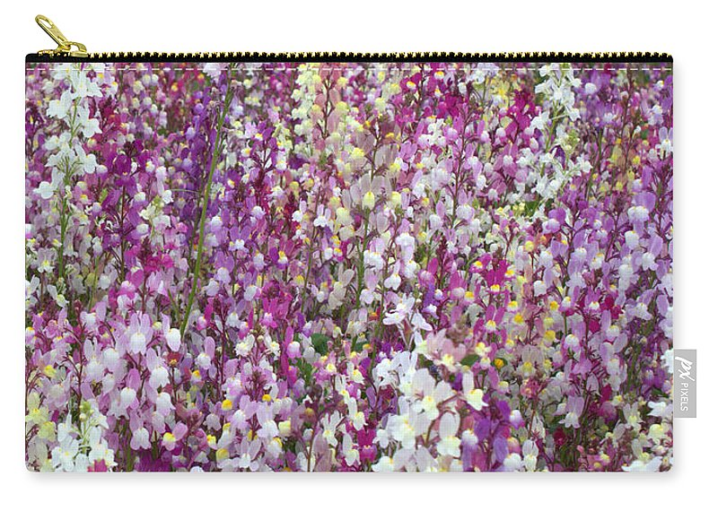 Flowers Carry-all Pouch featuring the photograph Field Of Multi-colored Flowers by Carol Groenen