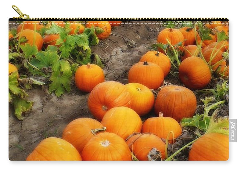 Pumpkins Carry-all Pouch featuring the photograph Field Of Pumpkins Card by Carol Groenen