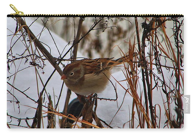 Bird Carry-all Pouch featuring the photograph Field Sparrow by Kathryn Meyer