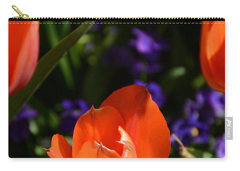 Carry-all Pouch featuring the painting Fiery Colored Tulips by Constance Woods