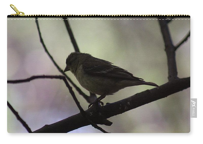 Bird Carry-all Pouch featuring the photograph Finch Shadow 042814a by Edward Dobosh