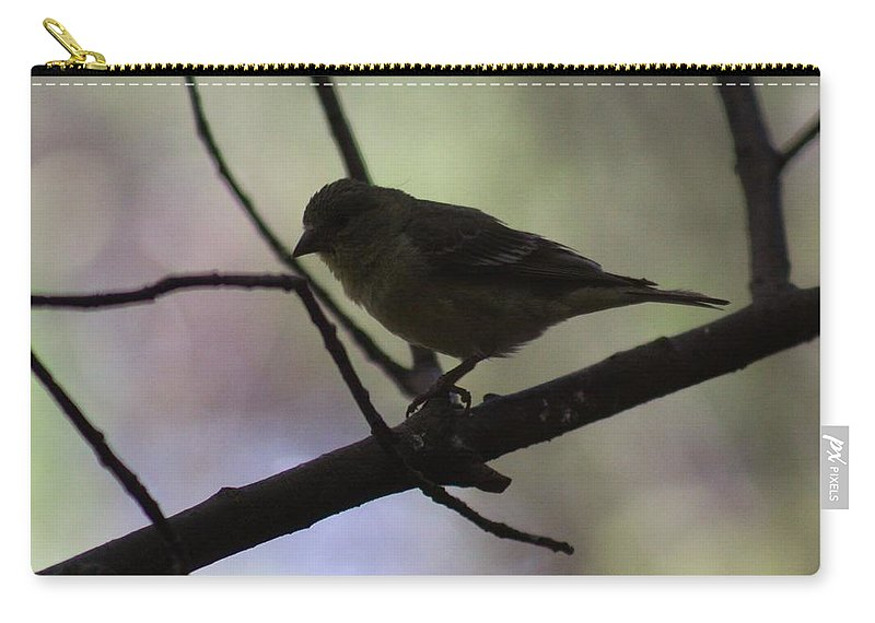 Bird Carry-all Pouch featuring the photograph Finch Shadow 042814b by Edward Dobosh