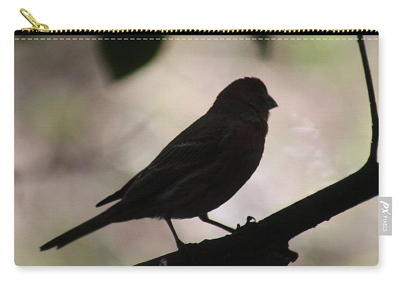 Bird Carry-all Pouch featuring the photograph Finch Shadow 042814d by Edward Dobosh