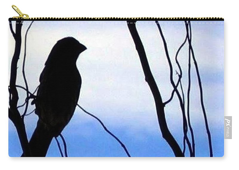 Finch Carry-all Pouch featuring the photograph Finch Silhouette 1 by Will Borden
