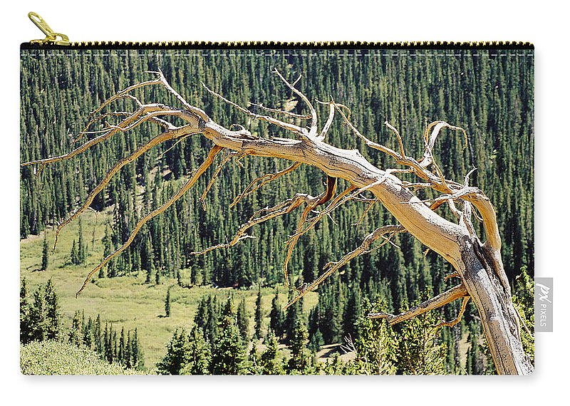 Dead Tree Carry-all Pouch featuring the photograph Find The Bird by Ric Bascobert