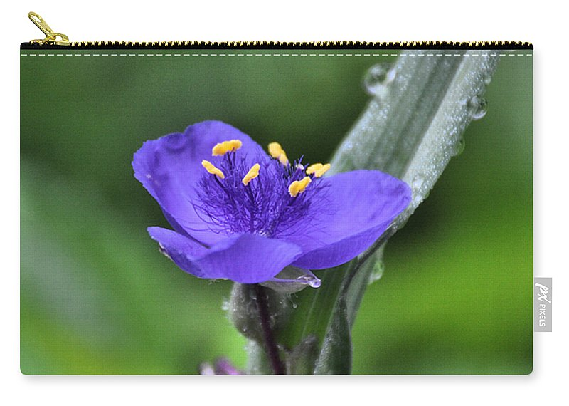 Flower Carry-all Pouch featuring the photograph Fine Filaments by Rich Bodane