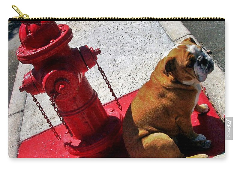 English Bulldog Carry-all Pouch featuring the photograph Fireplug Bulldog by Benjamin Yeager