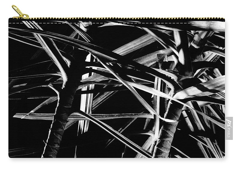 Black & White Carry-all Pouch featuring the photograph Fireworks One by Frederic A Reinecke
