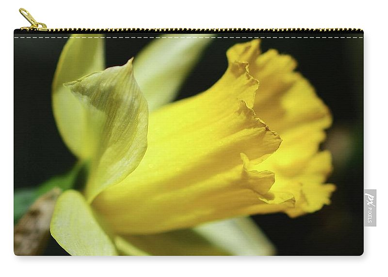 Flowers Carry-all Pouch featuring the photograph First Sign Of Spring by Cindy Manero
