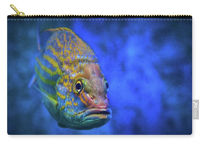 Fish Frown Carry-all Pouch featuring the photograph Fish Frown Story by Don Columbus
