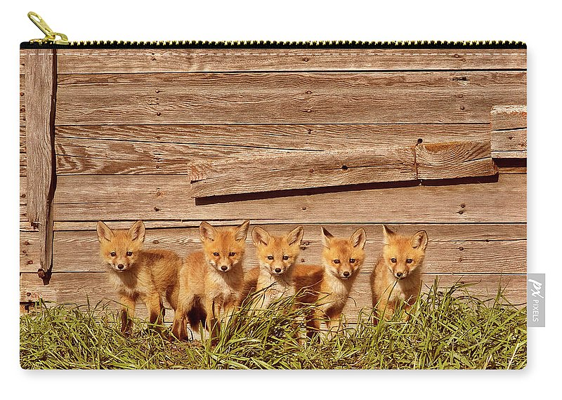 Red Fox Carry-all Pouch featuring the digital art Five Fox Kits By Old Saskatchewan Granary by Mark Duffy