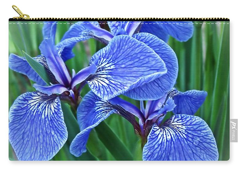 Flag Iris Carry-all Pouch featuring the photograph Flag Iris Blues by MTBobbins Photography