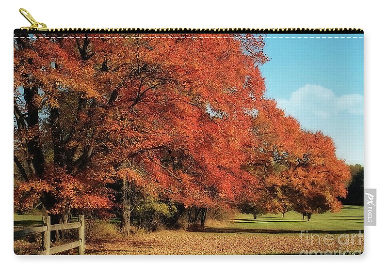 Autumn Carry-all Pouch featuring the photograph Flame Trees by Lois Bryan