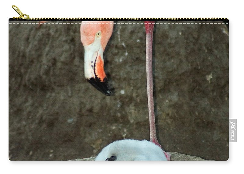 Pink Flamingo Carry-all Pouch featuring the photograph Flamingo And Chick by Anthony Jones
