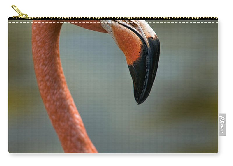 Flamingo Carry-all Pouch featuring the photograph Flamingo by Christopher Holmes