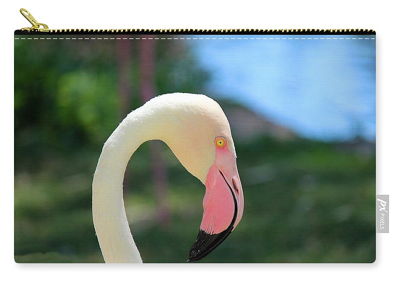 Flamingo Carry-all Pouch featuring the photograph Flamingo Closeup by Lorraine Baum