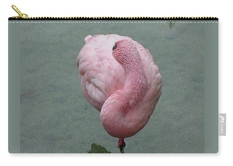 Flamingo Carry-all Pouch featuring the photograph Flamingo Feathers by Shirley Heyn
