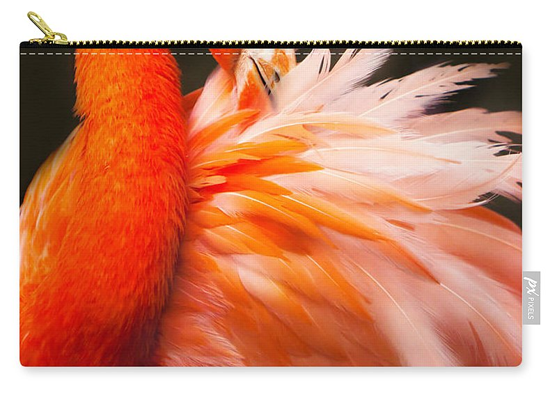 Flamingo Carry-all Pouch featuring the photograph Flamingo Fluff by Joan McCool