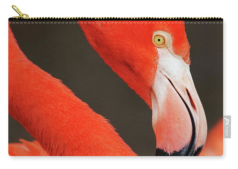 Flamingo Carry-all Pouch featuring the photograph Flamingo-head by Stan Goldstein