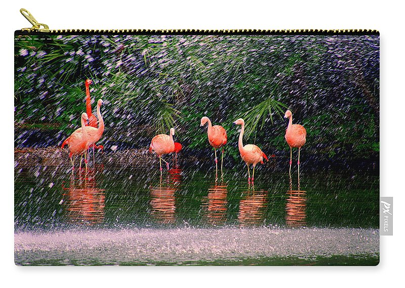 Flamingos Carry-all Pouch featuring the photograph Flamingos II by Susanne Van Hulst