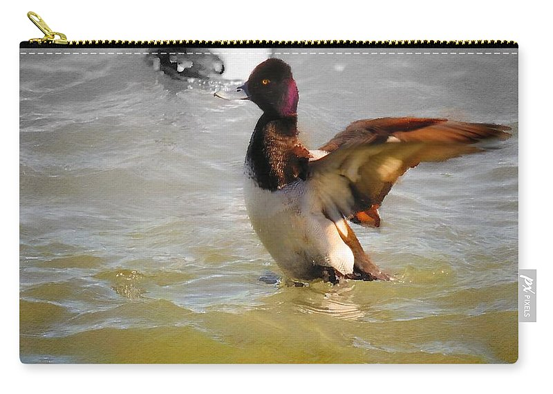 Duck Carry-all Pouch featuring the digital art Flapping Lesser Scaup by Rrrose Pix