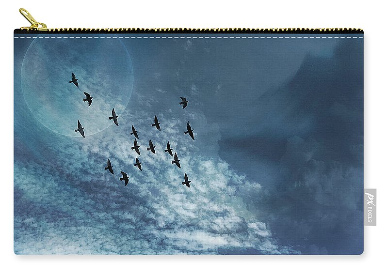 Dreams Carry-all Pouch featuring the photograph Flight Of Dreams by Anthony Robinson