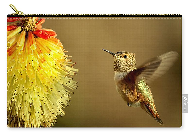 Hummingbird Carry-all Pouch featuring the photograph Flight of the Hummer by Mike Dawson