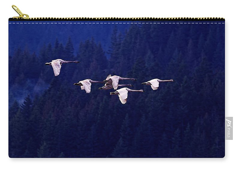 Trumpeter Swans Carry-all Pouch featuring the photograph Flight Of The Swans by Sharon Talson
