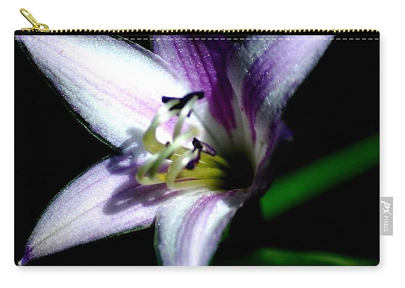 Digital Photograph Carry-all Pouch featuring the photograph Floral 7-24-09 by David Lane