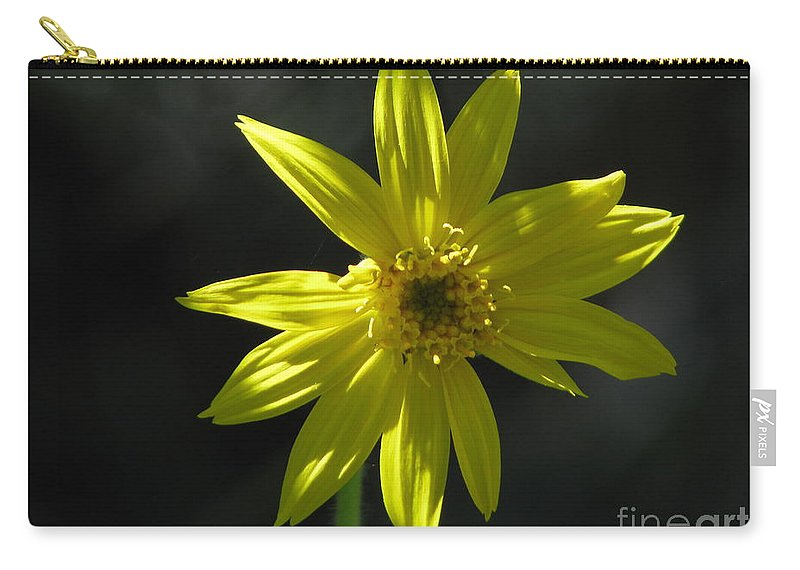 Light Carry-all Pouch featuring the photograph Floral by Amanda Barcon