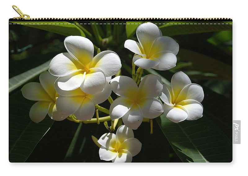 Nature Carry-all Pouch featuring the photograph Floral Beauties by Rob Hans