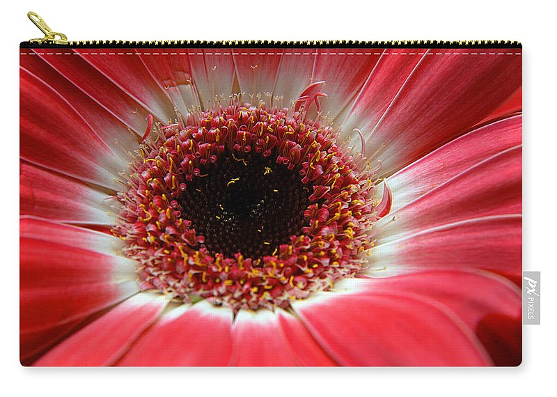 Clay Carry-all Pouch featuring the photograph Floral by Clayton Bruster