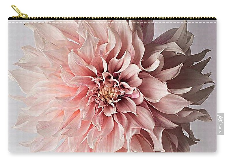 Flower Pink Elegant Breathtaking Carry-all Pouch featuring the photograph Floral Elegance by Sarah Waldman
