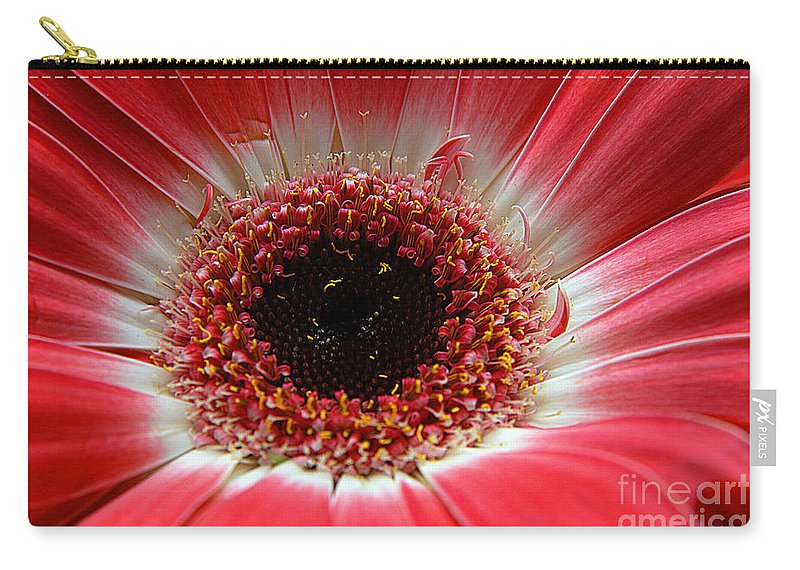 Clay Carry-all Pouch featuring the photograph Floral Eye by Clayton Bruster