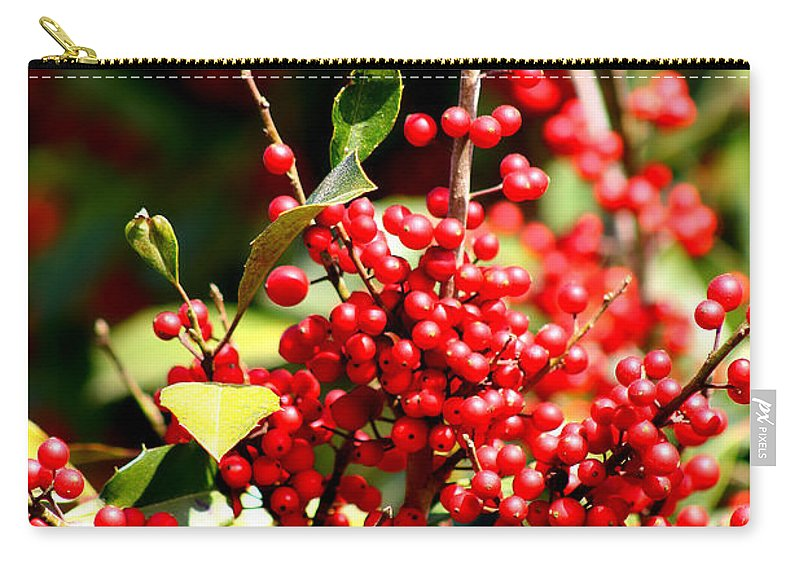 Winter Carry-all Pouch featuring the photograph Florida Holly Berry's by Debra Forand