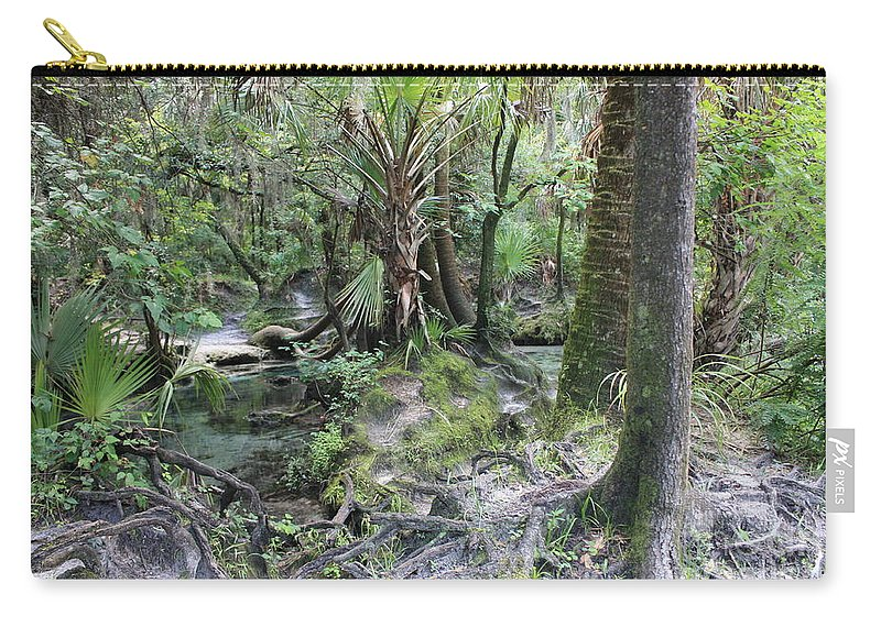 Florida Landscape Carry-all Pouch featuring the photograph Florida Landscape - Lithia Springs by Carol Groenen