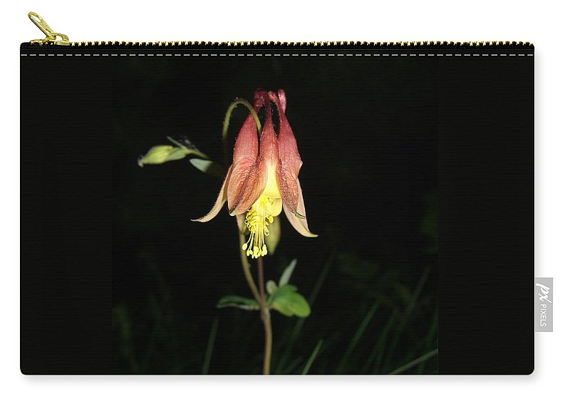 Flower Carry-all Pouch featuring the photograph Flower by Amanda Kabat