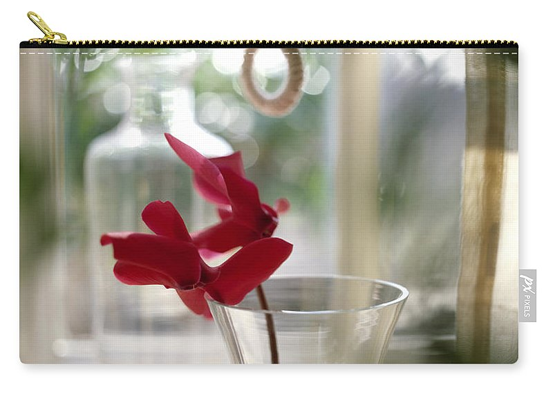 Flower Carry-all Pouch featuring the photograph Flower And Window by Daniel Troy